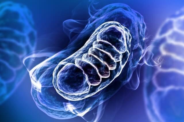 bakterie w wodzie